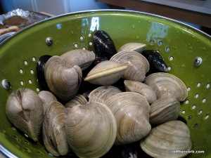 OHC_mussels_clams